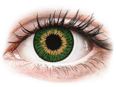 Expressions Colors Green - Lente me Ngjyre & Optike (1 lente)
