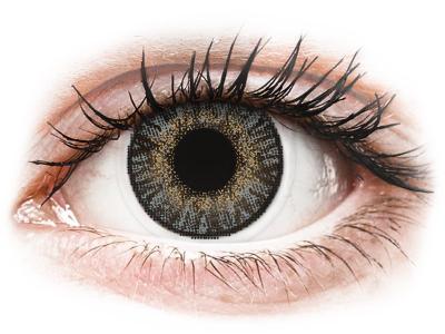 FreshLook ColorBlends Grey - Lente me Ngjyre & Optike (2 lente) - Coloured contact lenses
