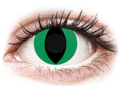 CRAZY LENS - Cat Eye Green - Lente kozmetike ditore (2 lente)